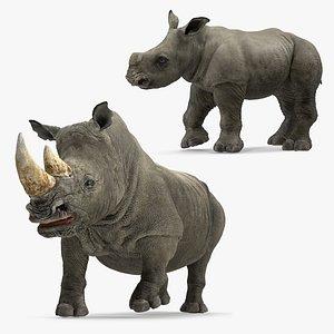 rigged rhinos model