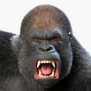 Rigged Gorilla 3D model