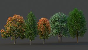 XfrogPlants Maple Pack 3D model