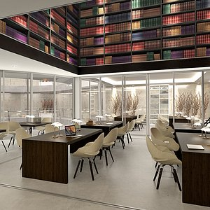 library interior max