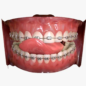 3D model teeth mouth character