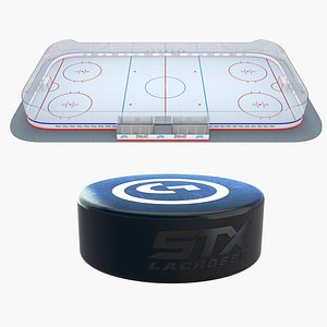 Ice Hockey Puck and Rink 3D