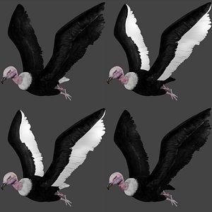 flying vulture condor 3D model
