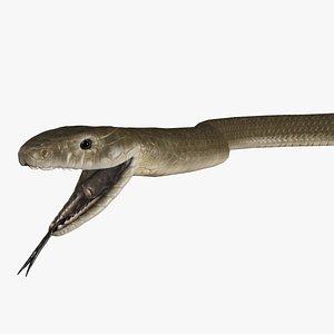 snake black mamba 3D model