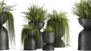 3D model Asparagus  in a flowerpot for the interior 945