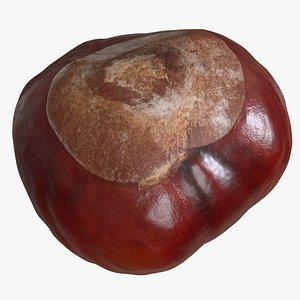 3D model chestnut kernel