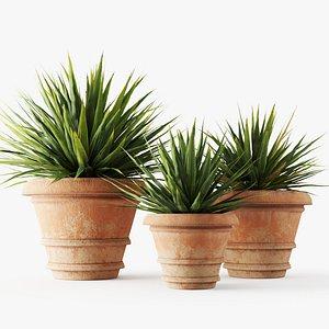 yucca pot terracotta 3D model