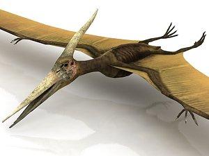 Pteranodon Flying Carnivorous Reptile 3D