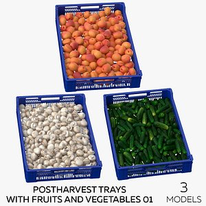 Postharvest Trays with Fruits and Vegetables 01 - 3 models 3D model