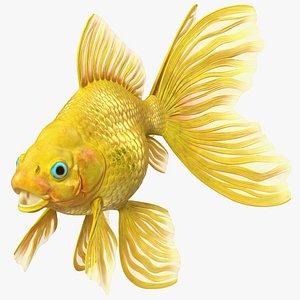 Goldfish 3D
