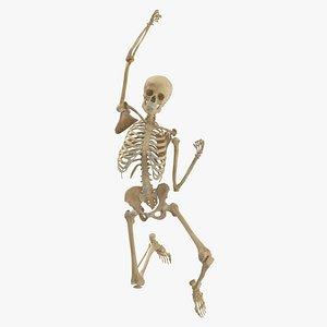 Real Human Female Skeleton Pose 74 3D model