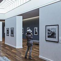 3d Modern Art Gallery