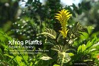 2020 XfrogPlants Flowers 1 Library