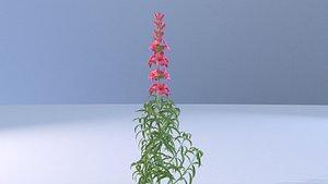 flower plant(1) 3D model