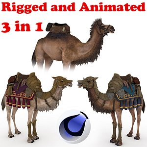 3D Camel Collection Rigged and Animated model