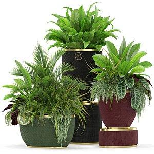 3D plants 454 design planters