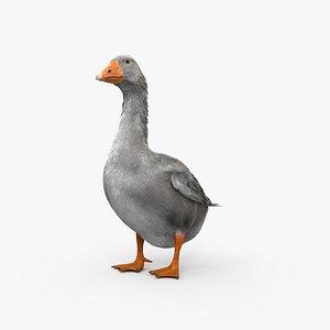 3D Goose HD model