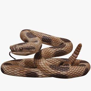 3D rigged rattlesnake model