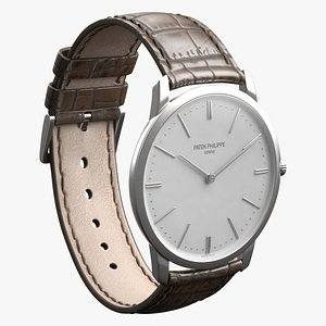Luxury Watch Silver Brown Closed 3D