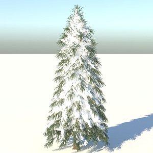 fraseri tree 3D model