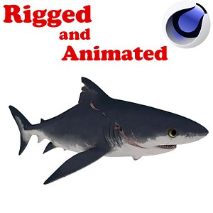 PUP Shark Rigged and Animated 3D model