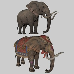 elephant mammal animal 3D model