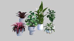 plant indoor planter 3D model