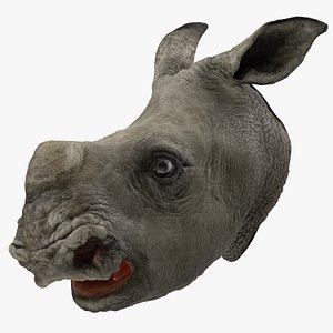 baby rhino head 3D model