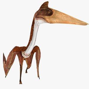 3D model animal dinosaur dino