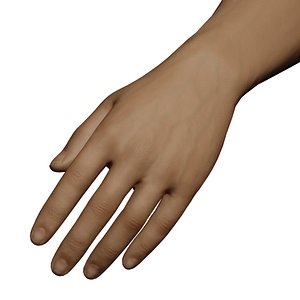 3D model Male Left Hand Rigged