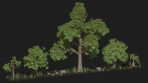 Five trees set model