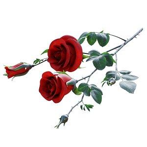 3D rose branch model