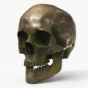 3D model Human Skull  Old Gold B - PBR