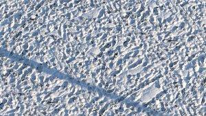 3D grass snow