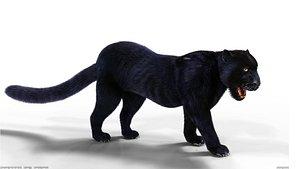 3D Fur Black Panther Rigged model