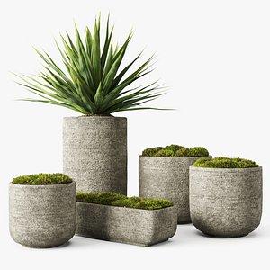 concrete vessel moss yucca 3D model