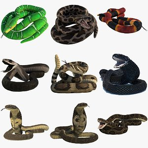 3D Snake Collection Rigged Animated model