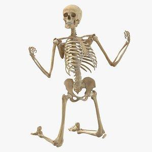 3D model Human Female Skeleton Pose 79