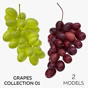3D Grapes Collection 01 - 2 models