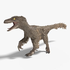 3D velociraptor feathers rigged