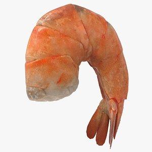Realistic Shrimp 3D model
