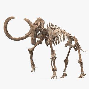 3D Mammoth Skeleton Old Bones Walking Pose