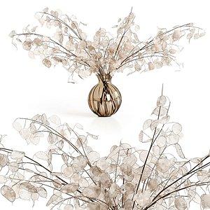 3D A bouquet of lunaria model