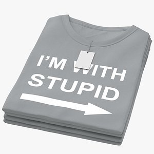 Female Crew Neck Folded Stacked With Tag Gray Im With Stupid 01 3D model