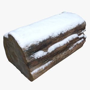 3D model tree stump snow