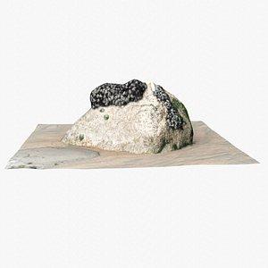 3D model Rock 3D Scan 29