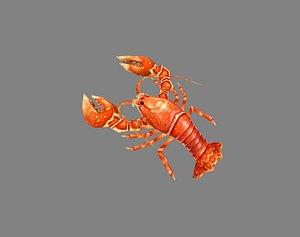 3D Cartoon Lobster - Sea Shrimp - Crab