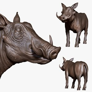 Pig wild boar sculpt, retopology uvs 3D model