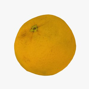 3D model Bahia Orange - Real-Time 3D Scanned