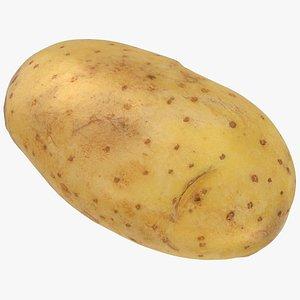 3D Old Potato